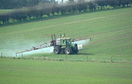 Avertisment INSERM: Expunerea la pesticide creşte riscul de îmbolnăvire de cancer de prostată şi maladia Parkinson