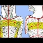 Vindecarea sistemului limfatic