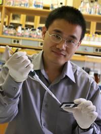 O nouă descoperire în corpul uman, din greșeală. Oamenii de știință susțin că ar influența apariția cancerului