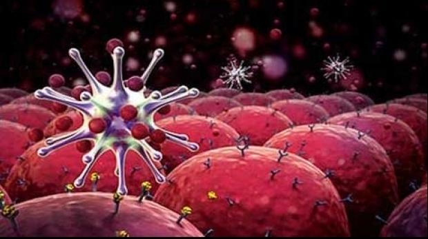 A fost descoperit anticorpul pentru cancer