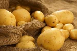 Cartofii pot preveni cancerul la stomac