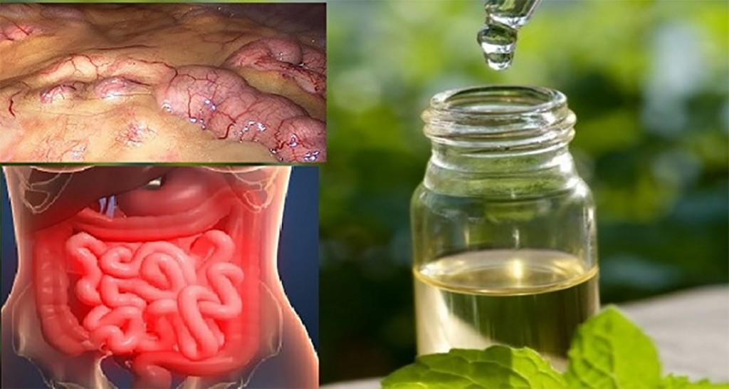 Remediul minune care scoate toate toxinele din organism în 3 zile, previne cancerul, elimină grăsimile și excesul de apă!